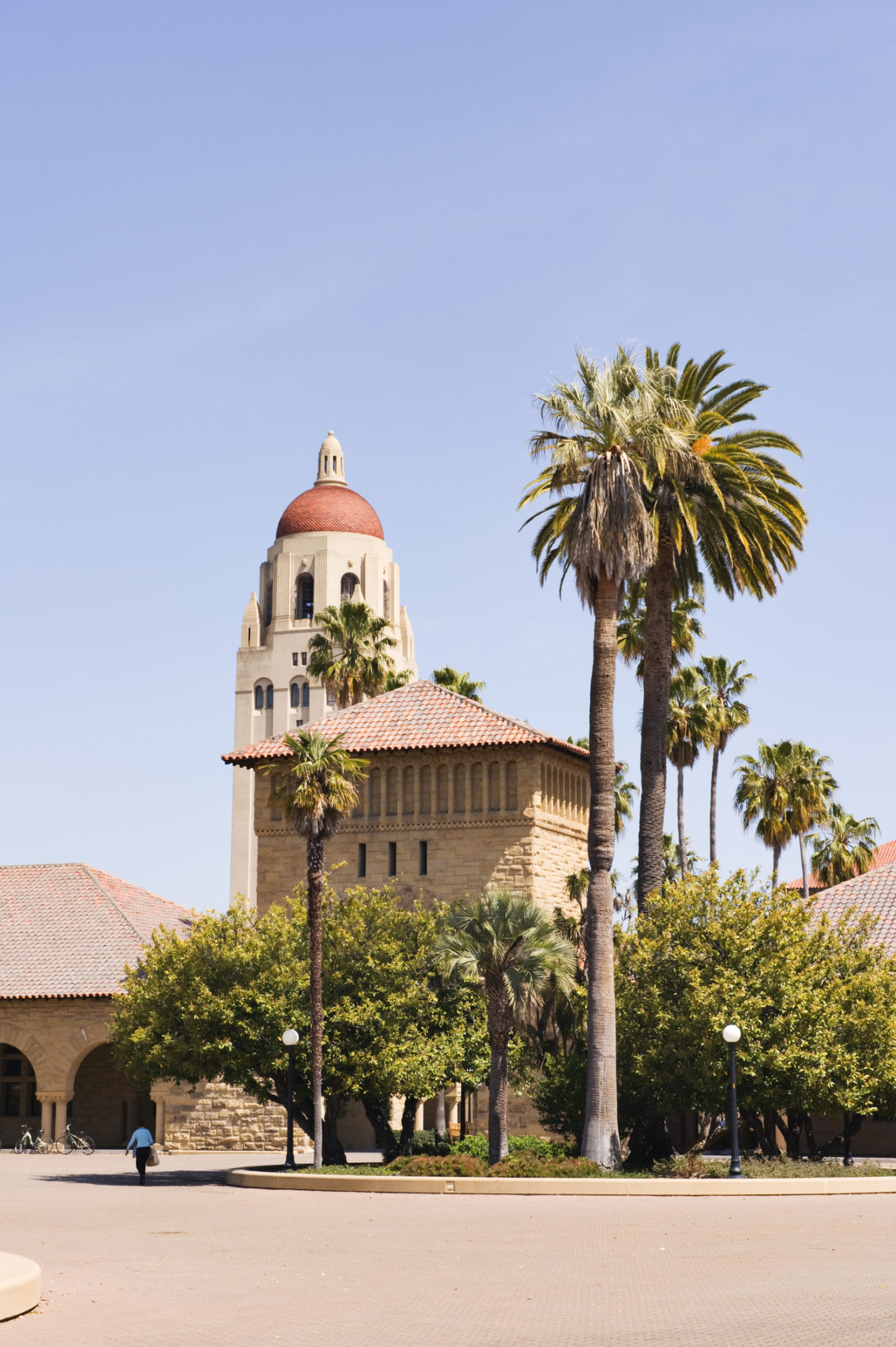 Stanford Views from the Quad